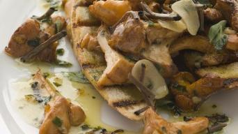 Dušené divoké houby na česnekovém másle